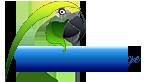 LogoWeb144