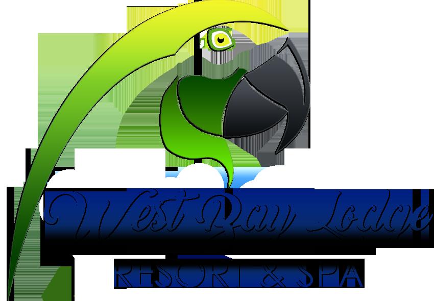 LogowebN